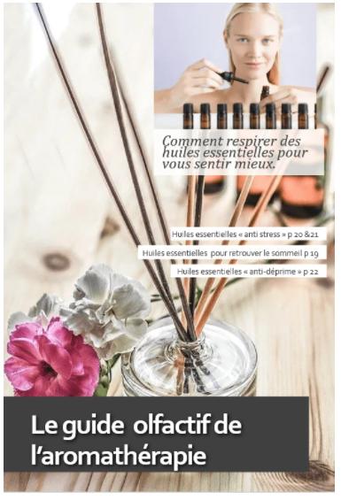 Guide olfactif de l'aromathérapie - Histoire de bijoux